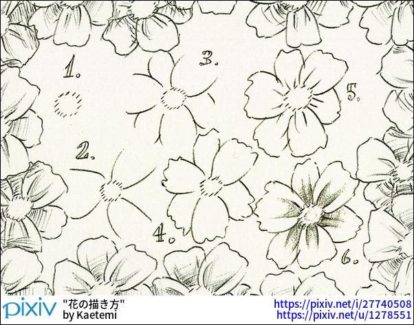 花の描き方